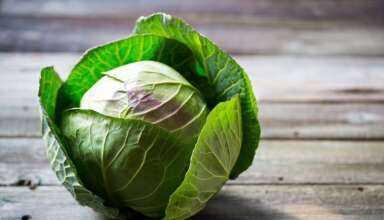 Cabbage Freezing